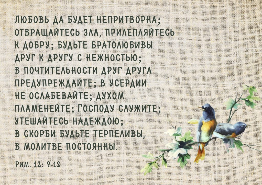 Цитата дня_апостол